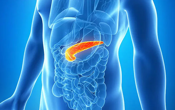 Pancreatic Cancer Pain Management